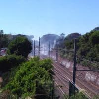 Castel Fusano, fiamme e fumo vicino alla pineta