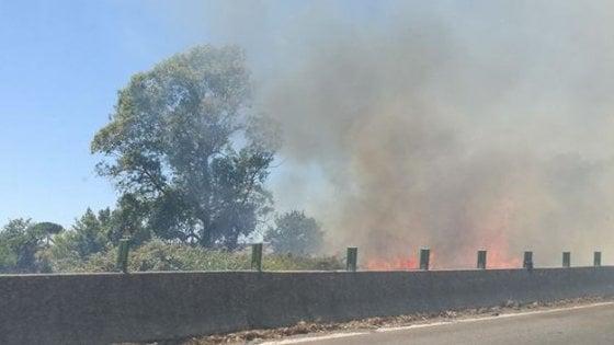 Pontina in tilt per l'ennesimo incendio: arrestato il piromane