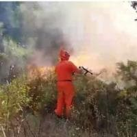 Circeo di nuovo in fiamme, piromani in azione nella Baia d'Argento