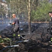 Incendio a Castel Fusano, un altro fermato. Fiamme a Settebagni, chiuso per due ore tratto dell'autostrada A1