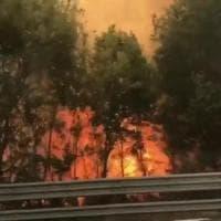 Sterpaglie in fiamme, chiusa per ore l'autostrada A1 tra Roma Nord e Orte