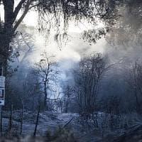 Roma, focolai a Castel Fusano: tre gli elicotteri in azione
