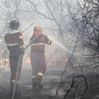 Castel Fusano, senza sosta i roghi: vigili del fuoco e canadair al lavoro