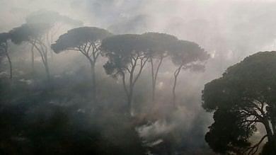 Castel Fusano, senza sosta i roghi vigili del fuoco e canadair al lavoro