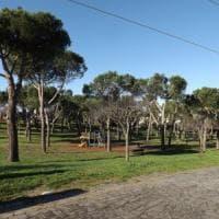 Roma, tubo cade su un bambino di otto anni al parco Papacci: è grave