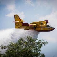 Fiumicino, fiamme in un bosco: evacuate tre fattorie
