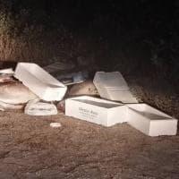 Roma, Ama non pulisce: tonni abbandonati sulla Litoranea. L'azienda: