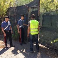 Roma, impianto abusivo per il trattamento dei rifiuti scoperto in zona Marconi