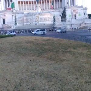 """Roma, degrado piazza Venezia. Il Pd: """"Il verde sta morendo, ora un bando per i volontari"""""""