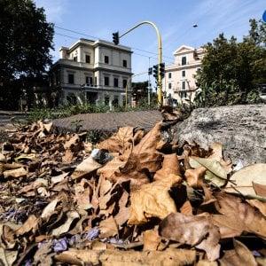 """Salvatore Tutino: """"Raggi mi disse: firmi qui, poi i siluri di Fico e Grillo"""""""