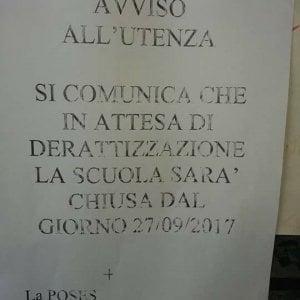 Roma, chiusa per topi una scuola materna a Garbatella