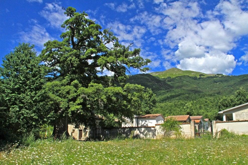Un paese dentro la città, il rione Monti ospita Amatrice: la mostra prima e dopo il sisma