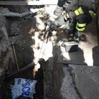 Roma, perdita di gas in viale Trastevere: chiusa la strada per ore