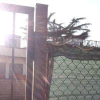Roma, paura al Testaccio: c'è un serpente all'ingresso del nido