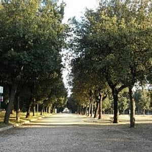 Roma, furto nella sede del Servizio Giardini di Villa Borghese