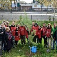 Roma, alberi per il futuro: la prima giornata di forestazione urbana
