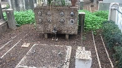 """Il guano invade il cimitero del Verano  """"La manutenzione è insufficiente""""  foto"""
