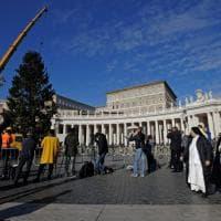 Piazza San Pietro, al via i preparativi per Natale: l'albero arrivato dalla Polonia