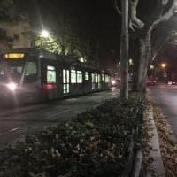 Roma, foglie secche e olio sull'asfalto: il tram si blocca sulla Gianicolense