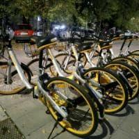 Roma, cinquanta bici