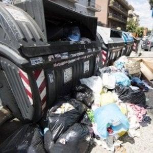 Rifiuti in strada e topi a spasso, a Roma scatta una nuova emergenza