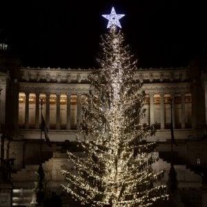 """""""Triste, spelacchiato, uno scovolino"""": a Roma è già polemica per l'albero in piazza Venezia"""