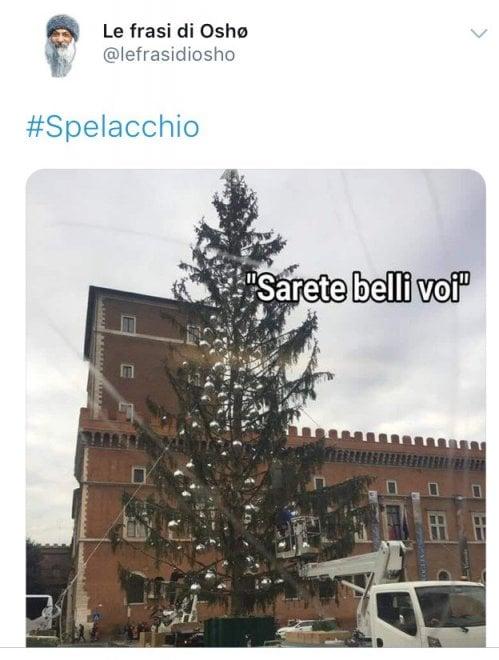 Conosciuto Roma, ironia social su Spelacchio, l'albero di Natale in piazza  MJ02
