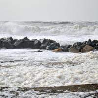Ostia, strana schiuma bianca sulle spiagge.