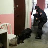 Ostia, controlli di carabinieri e polizia: arrestato anche membro del clan