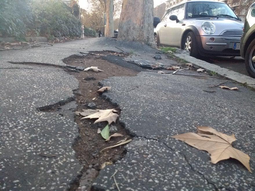 I marciapiedi di Roma, tra infide buche e radici che spaccano l'asfalto