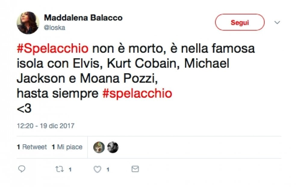 """Spelacchio è morto, ma l'ironia social non si ferma: """"Seppellitelo al Pantheon"""""""