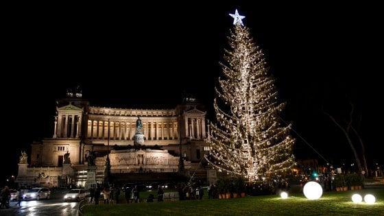 Roma, la seconda vita di Spelacchio: nel futuro ipotesi vendita, installazione d'artista o albero dei desideri
