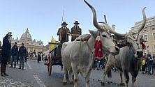 Animali a San Pietro  per la benedizione