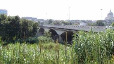 """Ponte della Magliana allarme della Sapienza: """"E' a rischio crollo, va chiuso"""""""