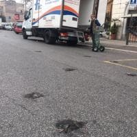 Roma, carcasse di storni a Porta Pia e al Verano: emergenza guano