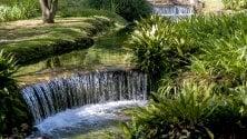 Giardino di Ninfa  visite al via dal 31 marzo