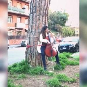 """Roma, violoncellista suona legata a un tronco contro l'abbattimento dei pini: """"Salviamo gli alberi"""""""