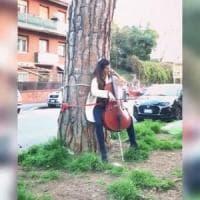 Roma, violoncellista suona legata a un tronco contro l'abbattimento dei