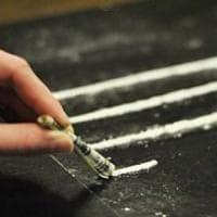 Droga dall'Olanda a Latina sui camion dei fiori: sei condanne per narcotraffico