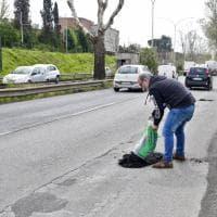 Emergenza buche a Roma, sulla Salaria i volontari tappano le voragini