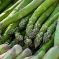 Sagre, sua maestà l'asparago:  protagonista a Canino e ad Ascrea