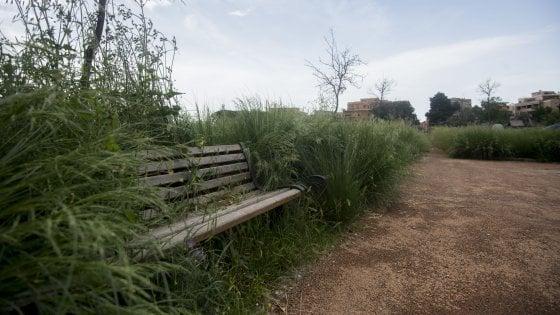Roma, dai parchi alle aiuole niente manutenzione: la città è una giungla