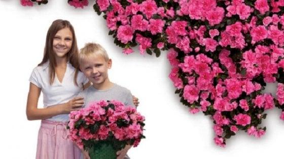 Azalee, rose, giochi, gite, mercatini e pic-nic per la Festa della  mamma