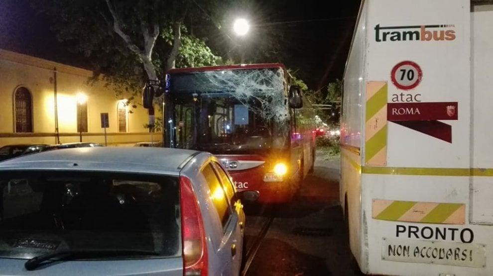 Roma, l'albero crollato in via delle Milizie: i danni al bus N1