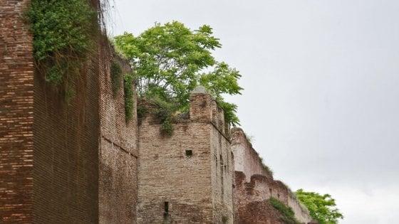 Roma, sos Mura Aureliane: così il verde selvaggio ha infestato la Storia
