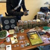 Roma, Casilina, hashish e marijuana fai da te, arrestata coppia di ventenni