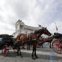 Roma, botticelle in rivolta contro nuovo regolamento.
