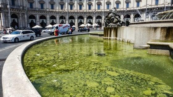 Roma, alghe e mucillagine: nella fontana di piazza della Repubblica l'acqua diventa verde