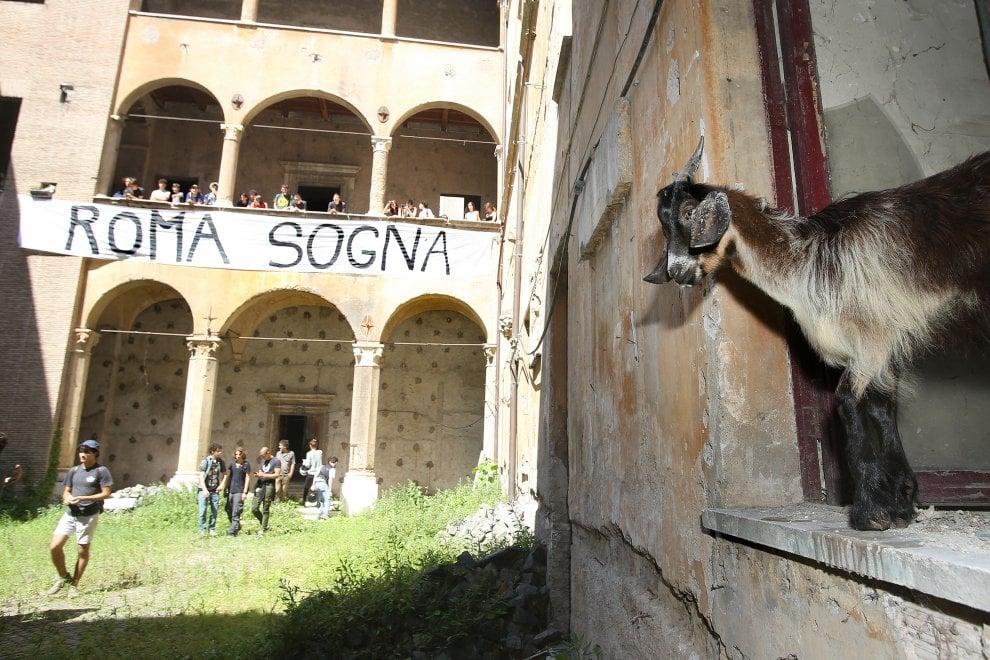Noantri Cittadini Planetari occupano Palazzo Nardini con capre e galline