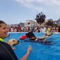 Roma, Zoomarine, sicurezza in mare con cani bagnino